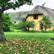 Stock Photo: Autumn tree and vacation house in Drakensberg