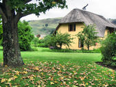 Autumn tree and vacation house in Drakensberg — Stock Photo