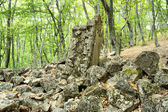 Ruins of the St. Iliya church in forest — Stock Photo