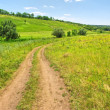 Summer road in countryside — Stock Photo