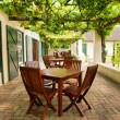 Tables on terrace covered by grape vine — Stock Photo