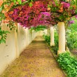 Autumnal arch covered by pink flowers — Stock Photo