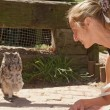 Girl gets closer to owl on floor — Stock Photo #25293893