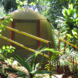 Tent in tropical forest — Stock Photo #25295169