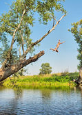 Boy jumps in water from tree — Stock Photo
