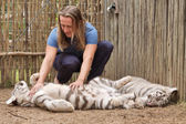 Young man plays with tiger cub — Stock Photo