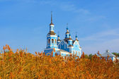 The St. Nicholas cathedral above dried reed — Stock Photo
