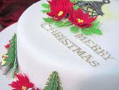 Merry Christmas cake with pine tree decor — Stock Photo