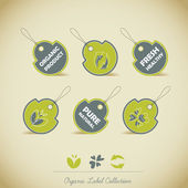 Organic Label Collection — Stock Vector