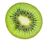 Beautiful slice of fresh juicy kiwi isolated on white background — Stock Photo