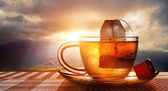 Cup of tea at sunset — Stock Photo