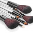 Set of professional makeup brushes — Stock Photo #21211945