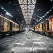 Old trains at abandoned train depot — Stock Photo