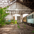 Old industrial building with train — Stock Photo #33204499
