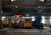 Old trains in abandoned depot — Stock fotografie