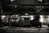 Old trains in abandoned depot — Zdjęcie stockowe