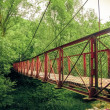 Bridge in the forest — Stock Photo