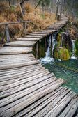 Pier over a lake in forest — Foto Stock