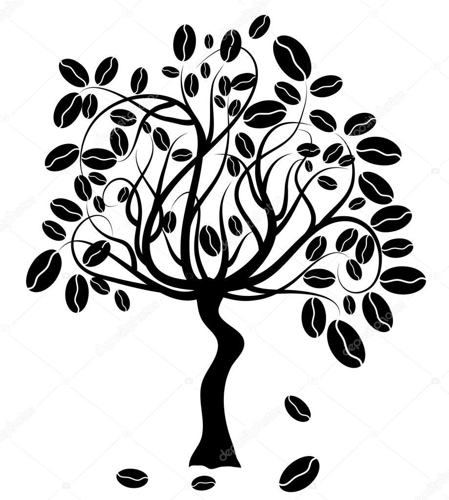 Coffee Bean Tree Drawing Coffee Tree Vector