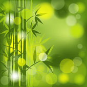 Bamboo abstract background, vector — Stock Vector