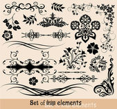 Set of floral elements for design, vector — Stock Vector