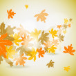 Maple autumn background, vector — Stock Vector