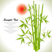 Bamboo background and sun, vector — Stock Vector
