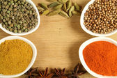 Spices frame — Stock Photo