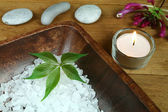 Terapia natural spa — Fotografia Stock