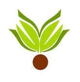 Leaf emblem — Stock Vector