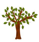 Дерево — Cтоковый вектор