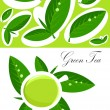 Green tea background — Stock Vector