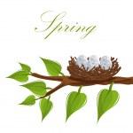 våren boet — Stockvektor