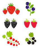 Berry fruits — Stock Vector