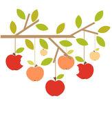 Autumn apples — Stock Vector