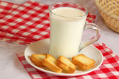 Milk and rusks — Stock Photo