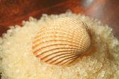 Seashell on salt pile — Stock Photo