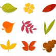 Autumn leaves collection — Stock Vector