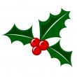 Christmas holly berry — Stock Vector