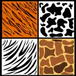 Animal skins — Stock Vector