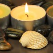 Постер, плакат: Candles and shell in spa