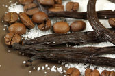 Vanilla and coffee beans — Stock Photo