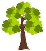 橡木树 — 图库矢量图片