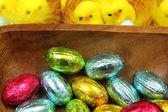 Mláďata a vejce — Stock fotografie