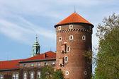 Wawel castle Cracow — 图库照片