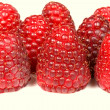 Raspberry isolated — Stock Photo #29440833