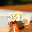 Daisies and book — Stock Photo