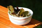 Lettuce in bowl — Stock Photo