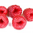 Fresh raspberry — Stock Photo #30550735