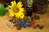 Sunflower and spices — Stock Photo